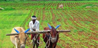 ખેડૂતો માટે ખુશ ખબર : આવી સારા વરસાદની આગાહી