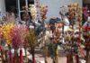 રાજકોટ: ઘર સજાવટની આઇટમો બજારમાં મુકાઇ