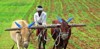 ખેડૂતો માટે રાહત સહાય પેકેજ જાહેર
